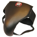 Martial Arts Faze 101 equipment xt deluxe groinguard