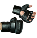 Martial Arts Faze Python Grappling Gloves for mma